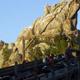 Disney's California Adventure 043