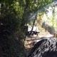 Parco Natura Viva 094