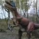Safari Park Pombia 037