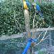 Safari Park Pombia 051
