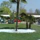 Safari Park Pombia 056