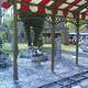 Safari Park Pombia 060