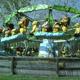Safari Park Pombia 062