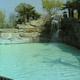 Safari Park Pombia 065