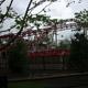 Cedar Point 013