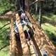 Jungle Raider Park - Margno 018