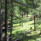 Jungle Raider Park - Margno 021