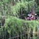 Jungle Raider Park - Margno 030