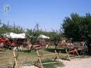 Cowboyland 005
