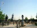 Cowboyland 015