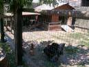 Cowboyland 025