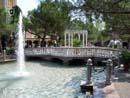Europa Park 102