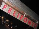 Felifonte 121